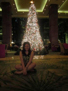 My 2013 Christmas WishList